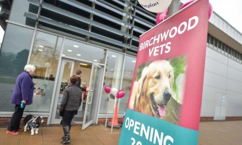 Birchwood Vets News