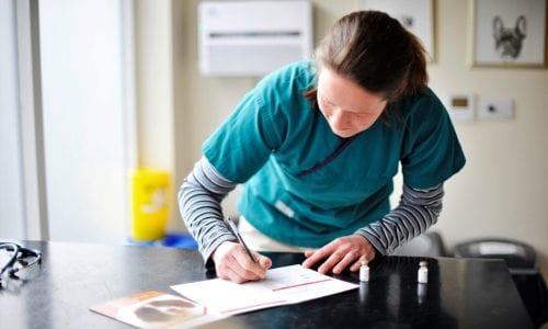vet completing paperwork