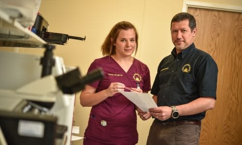Vet discusses case with nurse